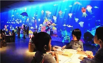 The Global Chain Indoor Theme Park Aircraft Carrier, Hefei MAG Global Magic World Has Opened!